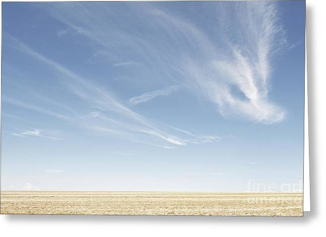 Wheat Field Sunset Print Greeting Cards - New Mexico Big Sky Greeting Card by Andrea Hazel Ihlefeld