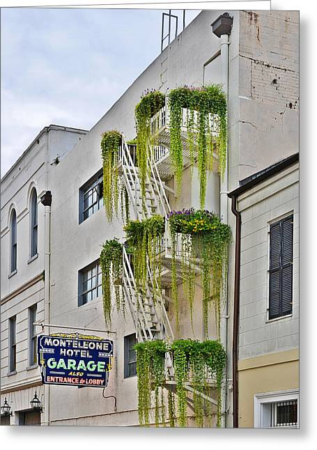 Stairways Greeting Cards - New Orleans Balcony Gardens Greeting Card by Christine Till