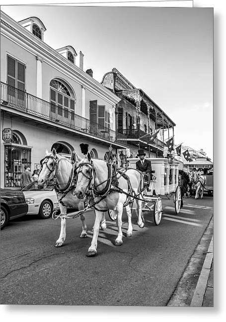 Quarter Horse Greeting Cards - New Orleans Funeral monochrome Greeting Card by Steve Harrington