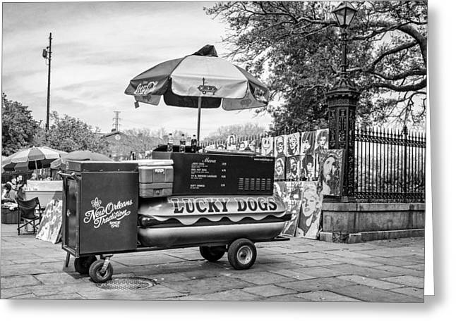Lucky Dogs Greeting Cards - New Orleans - Lucky Dogs bw Greeting Card by Steve Harrington