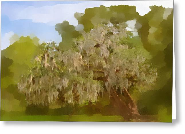 Cypress Greeting Cards - New Orleans Spanish Moss on Live Oaks Greeting Card by Christine Till