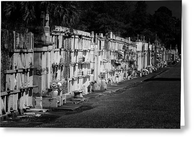 No 3 Greeting Cards - New Orleans St Louis Cemetery No 3 Greeting Card by Christine Till