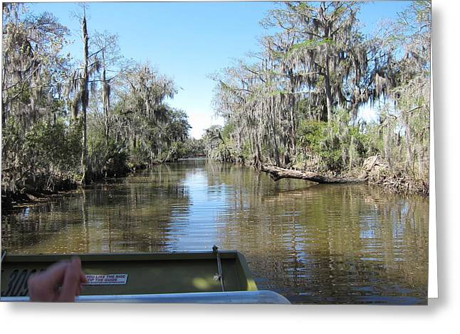 New Orleans - Swamp Boat Ride - 1212124 Greeting Card by DC Photographer