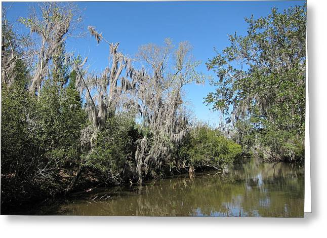 Las Greeting Cards - New Orleans - Swamp Boat Ride - 1212146 Greeting Card by DC Photographer