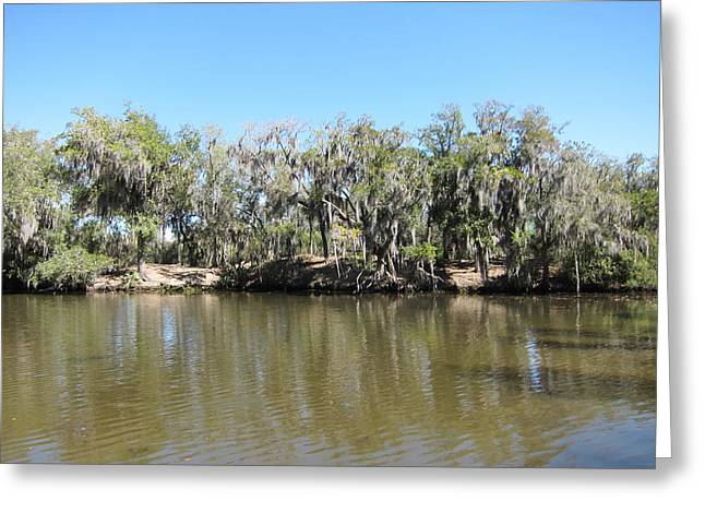 Boats Photographs Greeting Cards - New Orleans - Swamp Boat Ride - 1212150 Greeting Card by DC Photographer