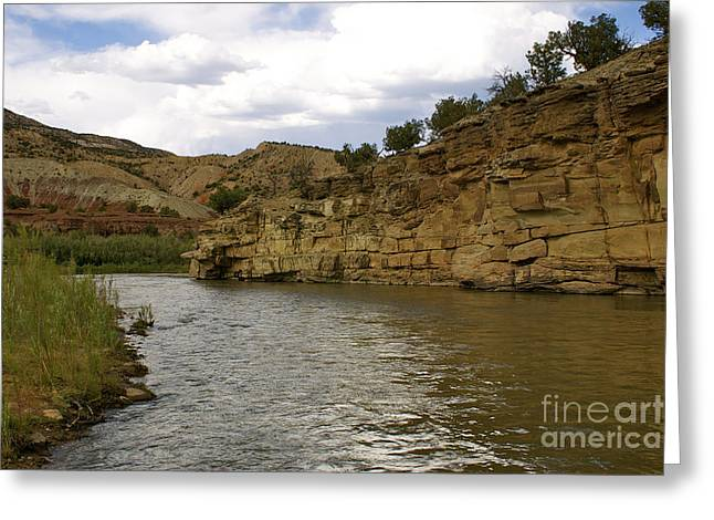 New Photographic Art Print For Sale Banks Of The Rio Grande New Mexico Greeting Card by Toula Mavridou-Messer