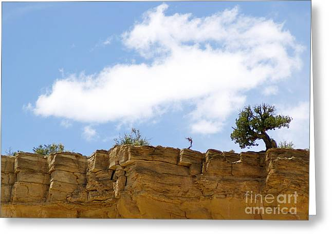 New Photographic Art Print For Sale Ghost Ranch New Mexico 6 Greeting Card by Toula Mavridou-Messer