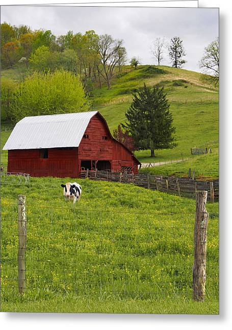 Red Barn Greeting Cards - New Red Paint Greeting Card by Mike McGlothlen
