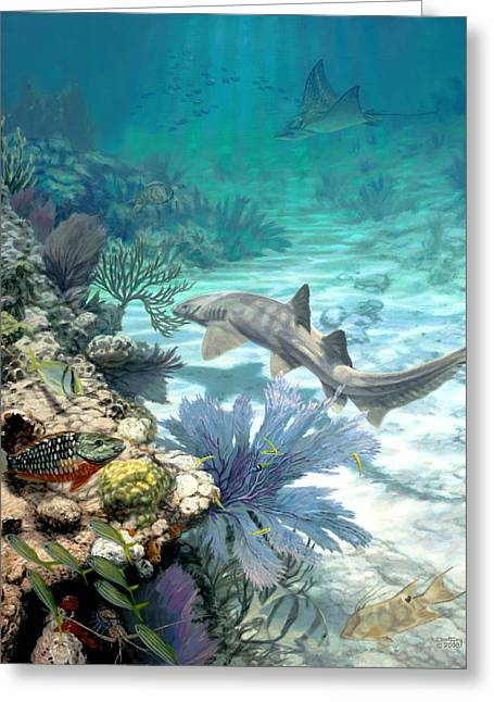 Salt Flat Pictures Greeting Cards - New Reef Greeting Card by Don  Ray