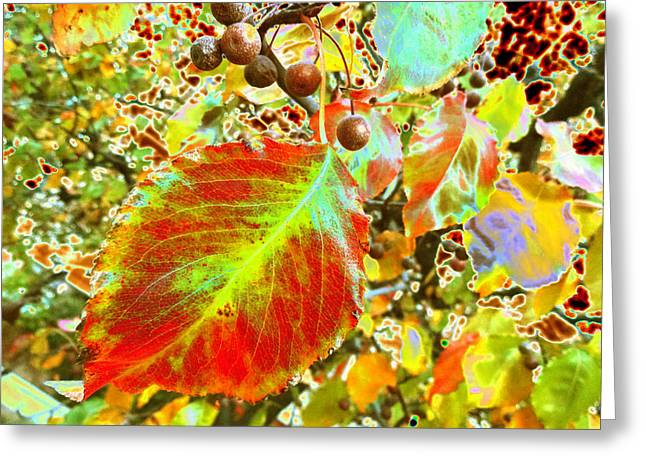 New Mind Greeting Cards - New Years Eve v10 Greeting Card by Kenneth James
