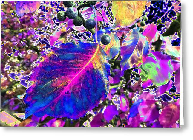 New Mind Greeting Cards - New Years Eve v8 Greeting Card by Kenneth James