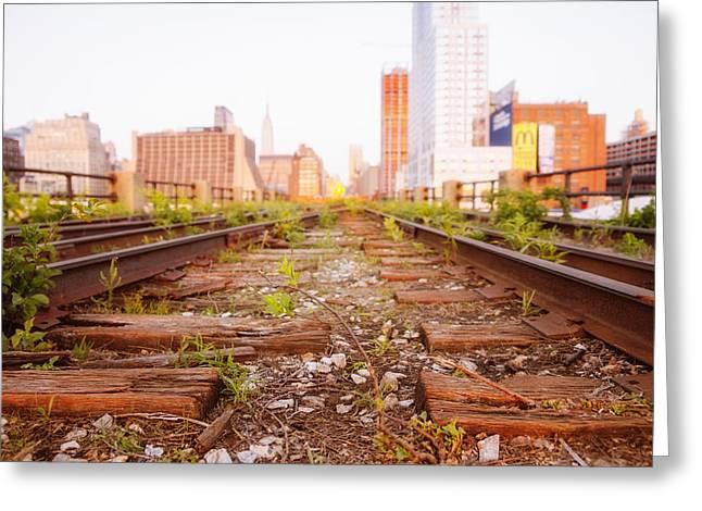 Train Tracks Greeting Cards - New York City - Abandoned Railroad Tracks Greeting Card by Vivienne Gucwa