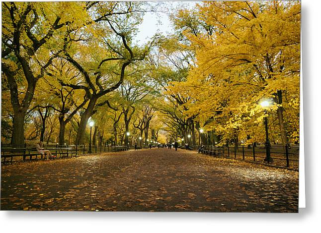 Autumn Landscape Photographs Greeting Cards - New York City - Autumn - Central Park - Literary Walk Greeting Card by Vivienne Gucwa