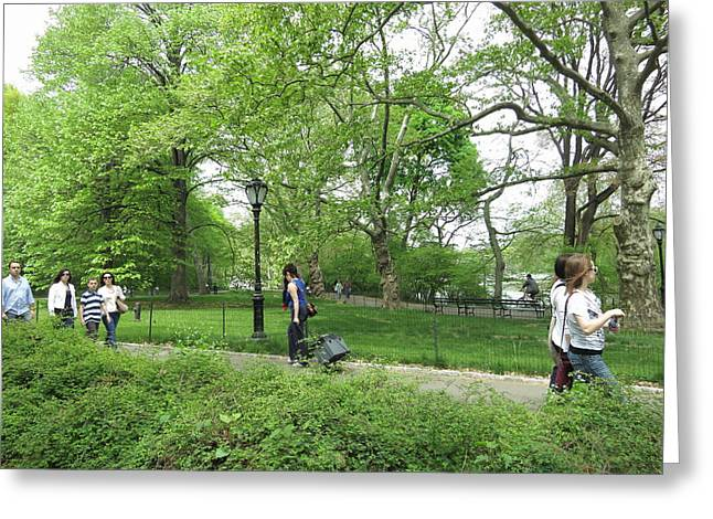York Greeting Cards - New York City - Central Park - 121215 Greeting Card by DC Photographer