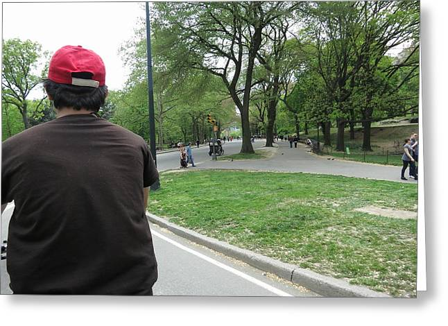 Carriage Greeting Cards - New York City - Central Park - 121221 Greeting Card by DC Photographer