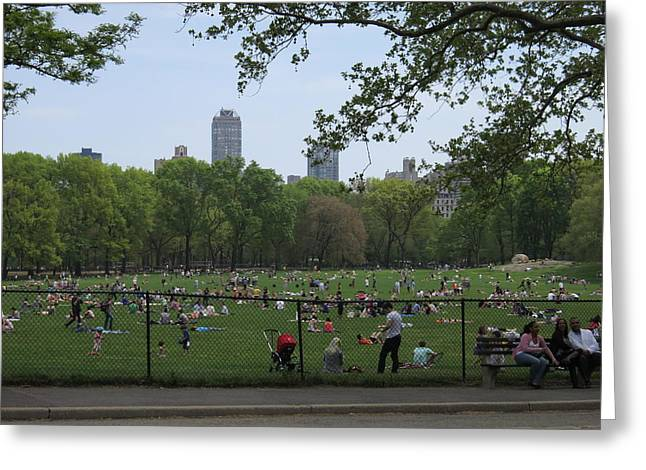 New York City - Central Park - 121222 Greeting Card by DC Photographer