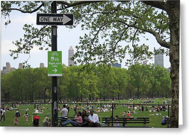 Carriage Greeting Cards - New York City - Central Park - 121223 Greeting Card by DC Photographer