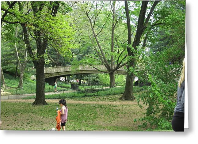 Carriage Greeting Cards - New York City - Central Park - 121226 Greeting Card by DC Photographer