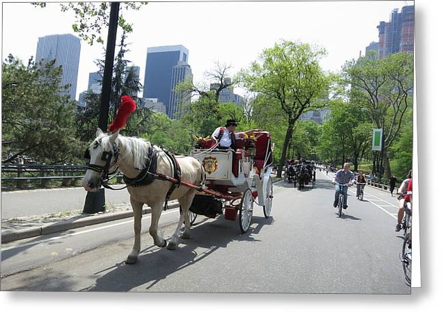 Carriage Greeting Cards - New York City - Central Park - 12124 Greeting Card by DC Photographer