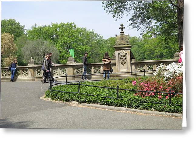 New York City - Central Park - 12128 Greeting Card by DC Photographer