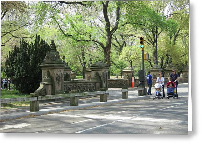 York Greeting Cards - New York City - Central Park - 12129 Greeting Card by DC Photographer