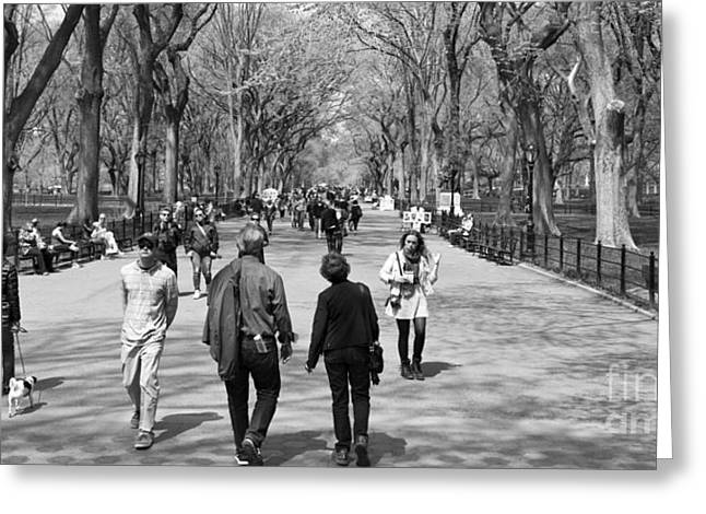 Walk Paths Greeting Cards - New York City Central Park in Spring time with People Greeting Card by ELITE IMAGE photography By Chad McDermott