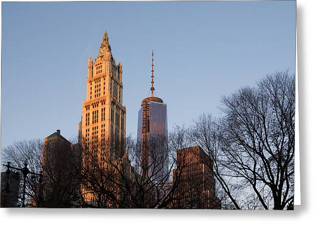 Old And New Greeting Cards - New York City Skyline Through the Trees Greeting Card by Georgia Mizuleva