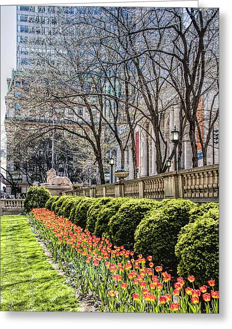 Bryant Park And Public Library Greeting Cards - New York Public Library Greeting Card by Nancy Wilt