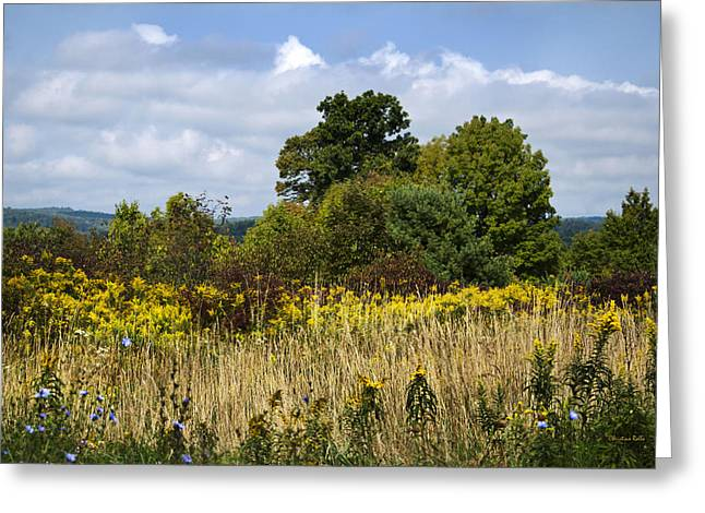 Hilltop Scenes Greeting Cards - New York September Greeting Card by Christina Rollo