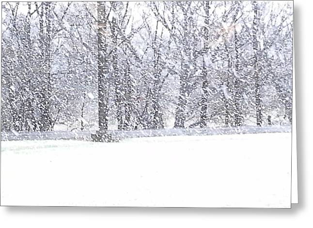 Snowed Trees Pastels Greeting Cards - New York State Blizzard 2015 Greeting Card by Jo-Ann Hayden
