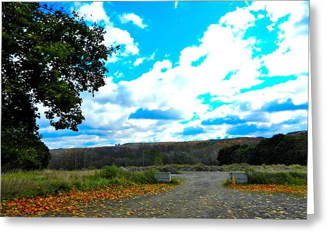 Finger Lakes Pastels Greeting Cards - New York State  Country Road Greeting Card by Jo-Ann Hayden