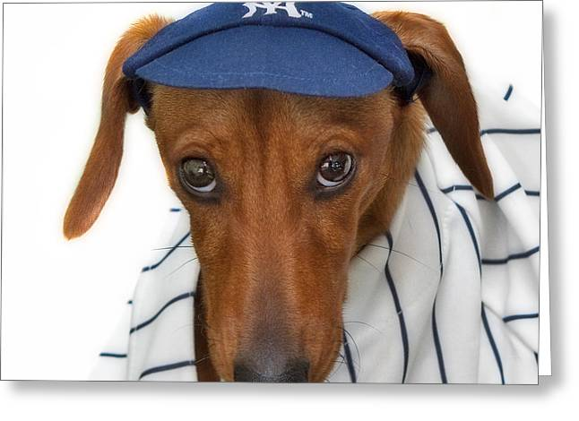 Bronx Bombers Greeting Cards - New York Yankee Hotdog Greeting Card by Susan Candelario
