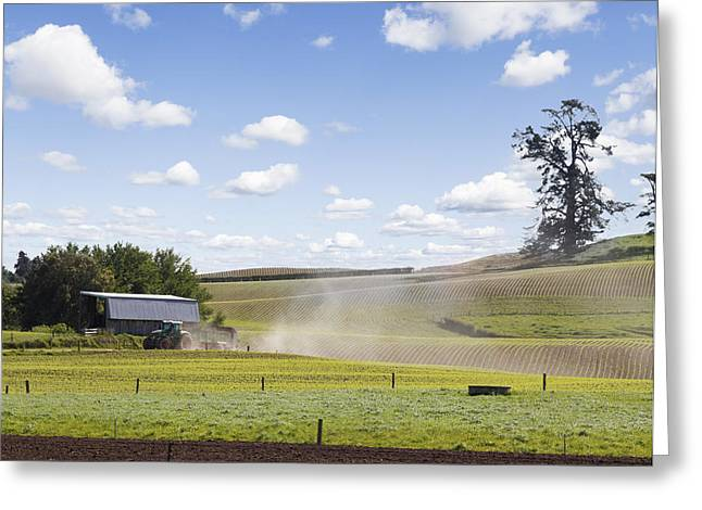 New Zealand Farming Greeting Card by Les Cunliffe