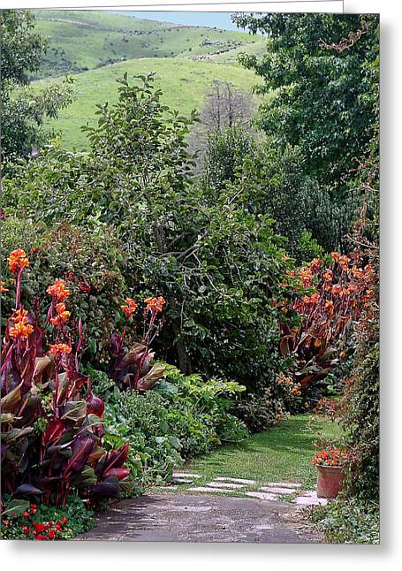 Canna Greeting Cards - New Zealand Gaden Pathway Greeting Card by Linda Phelps