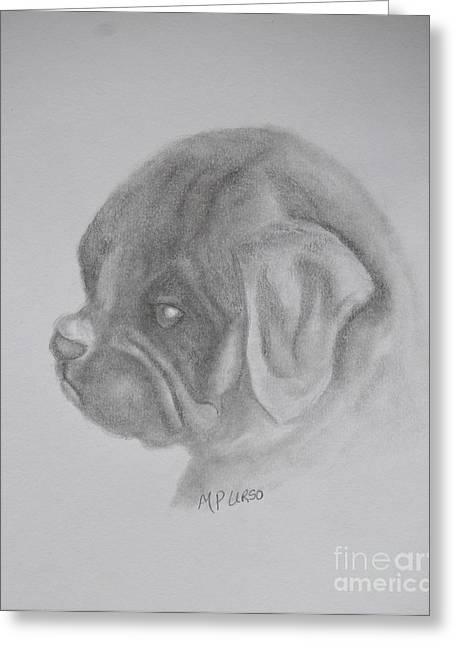 Working Dog Greeting Cards - Newbie Greeting Card by Maria Urso