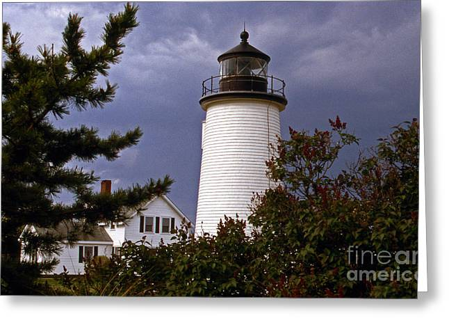 Lighthouse Photography Greeting Cards - Newburyport Harbor Lighthouse Greeting Card by Skip Willits