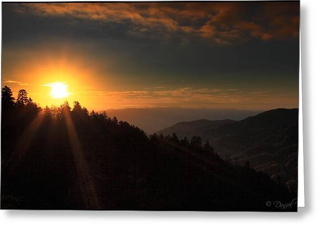 Smoky Pyrography Greeting Cards - Newfound Gap Sunrise Smoky Mountains Greeting Card by Daniel Behm