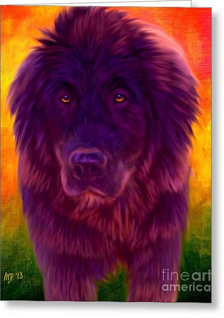 Newfoundland Puppy Greeting Cards - Newfoundland art Greeting Card by Iain McDonald