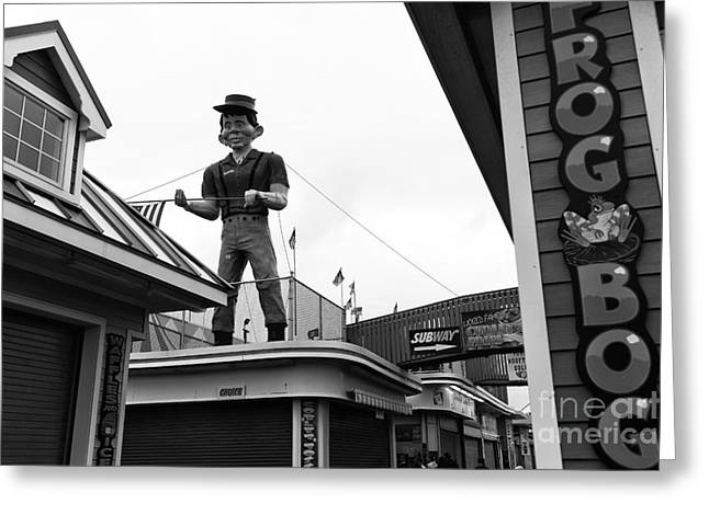 Seaside Heights Greeting Cards - Newman Watching Over mono Greeting Card by John Rizzuto