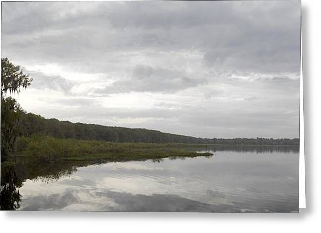 Gigapan Greeting Cards - Newnans Lake Greeting Card by William Ragan
