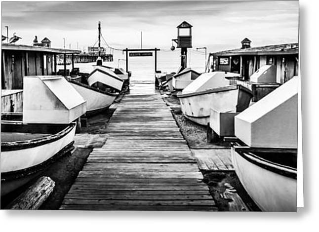 American Fleet Greeting Cards - Newport Beach Dory Fishing Fleet Panorama Photo Greeting Card by Paul Velgos
