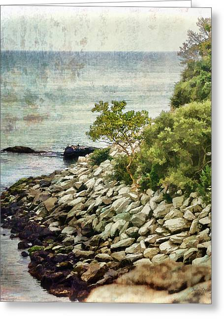 Salve Greeting Cards - Newport Cliff Walk Greeting Card by Julia Springer