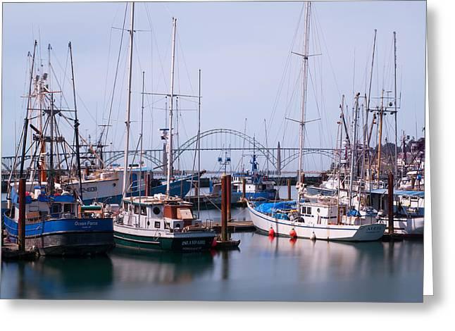 Yaquina Bay Bridge Greeting Cards - Newport Harbor Greeting Card by Patrick Campbell