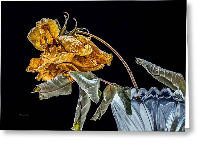 Flower Still Life Greeting Cards - News From Up The Street Greeting Card by Bob Orsillo