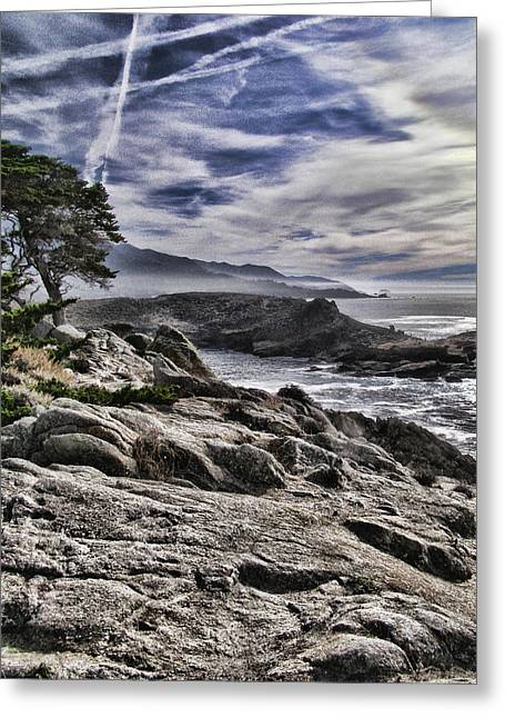 Point Lobos Greeting Cards - News Years at Point Lobos Greeting Card by Tara Schendel