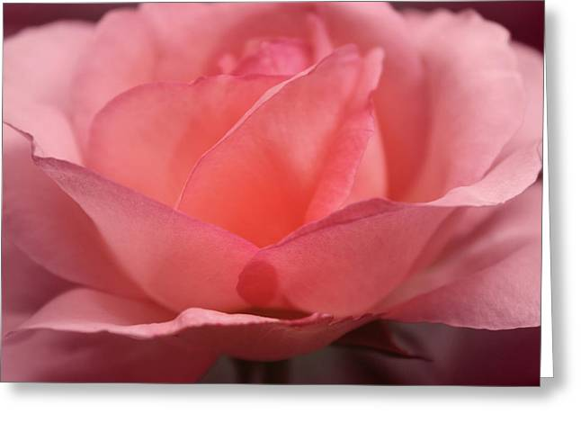 Best Greeting Cards - Next to the Heart Greeting Card by  The Art Of Marilyn Ridoutt-Greene