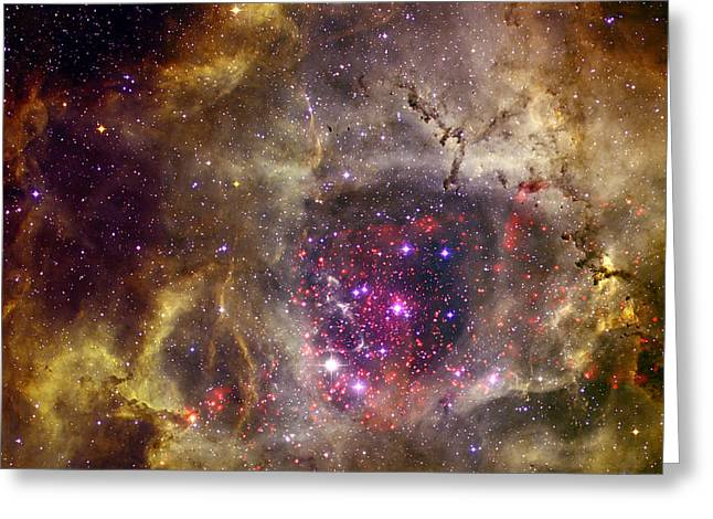 Rosette Greeting Cards - Ngc 2237 Caldwell 49 Rosette Nebula Greeting Card by Science Source
