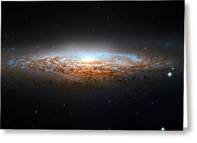 Constellation Greeting Cards - Ngc 2683 Greeting Card by Ricky Barnard