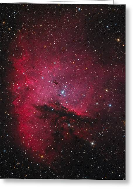 Ngc 281, The Pacman Nebula Greeting Card by Bob Fera