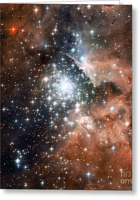 Heavenly Body Greeting Cards - Ngc 3603, Star Cluster Greeting Card by Science Source